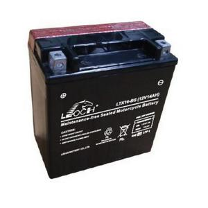 LEOCH Power Sport 12 Volt Battery (LTX16-BS), Dry Charged AGM Maintenance Free