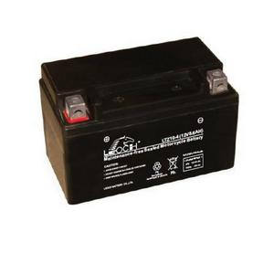 LEOCH Power Sport 12 Volt  Battery (LTZ10-4),  Sealed AGM